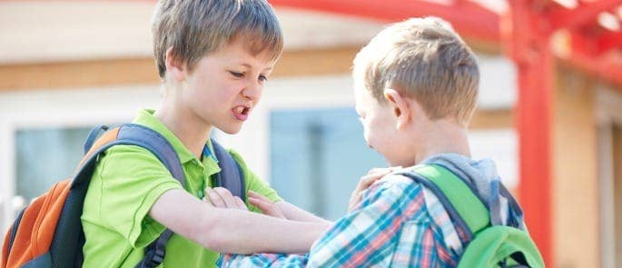 Conflict in the Classroom: Coaching Children to Act ...