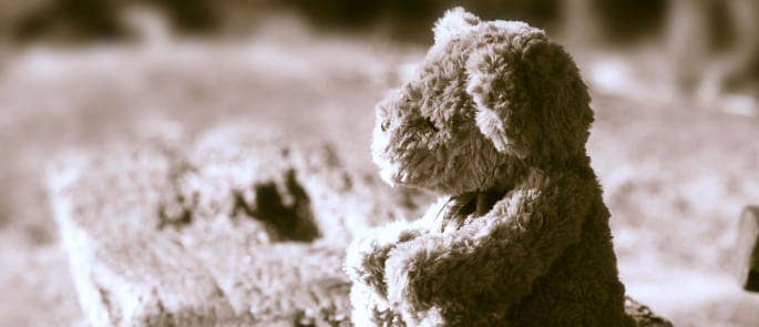 A lost child's bear