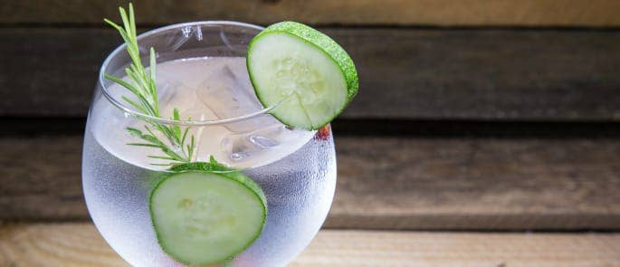 A G&T with cucumber and rosemary