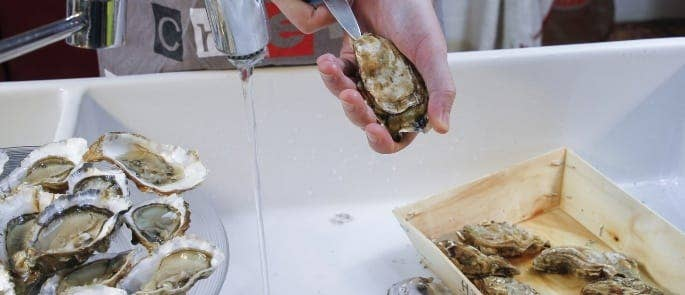 A chef shucking oysters